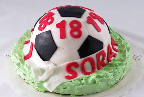 schoepflin-sport-fussball-03